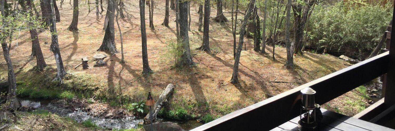 栃木県那須町フィンランドの森